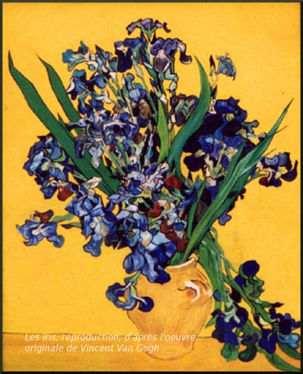 Reproduction Les iris a la maniere de Van Gogh