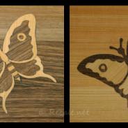 Marqueterie papillon (détail)
